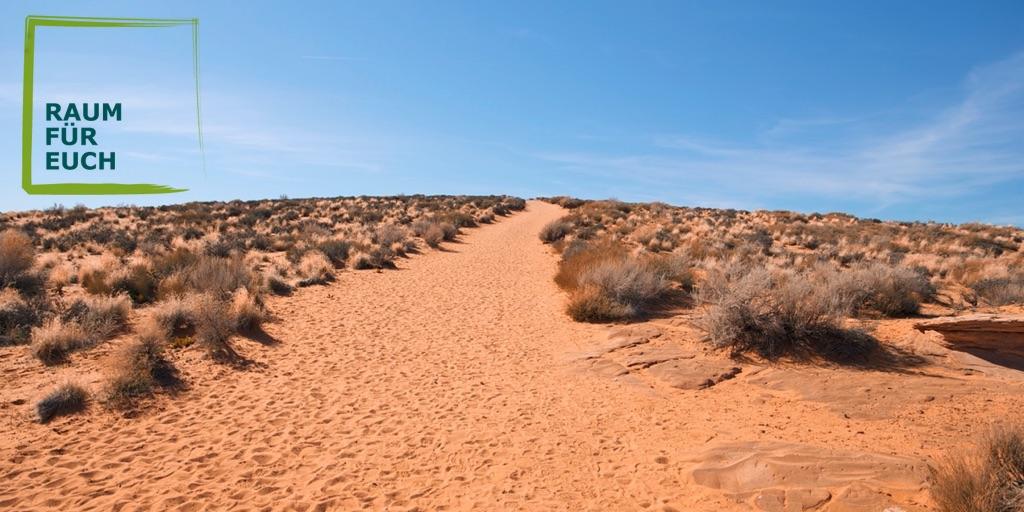 Veränderung Wüste